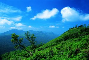 coorg honeymoon tour package